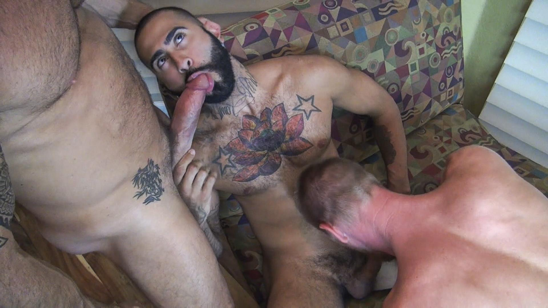Very hot hairy sex video picturs #3