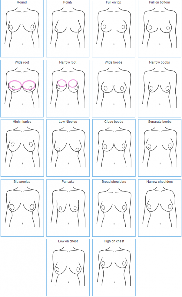 Different types of tits