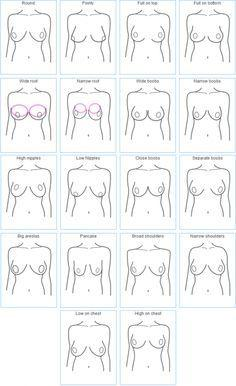 Different shaped boob pics