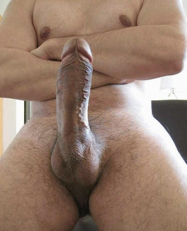 Where big hard erect cock