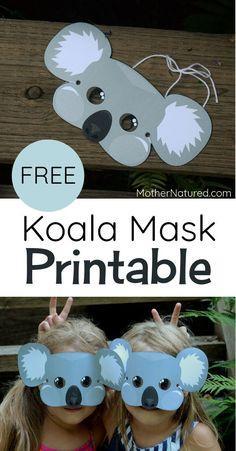 Koala overview teen tube