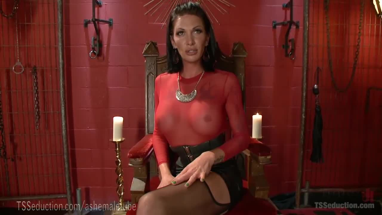 Free domination shemale porn videos