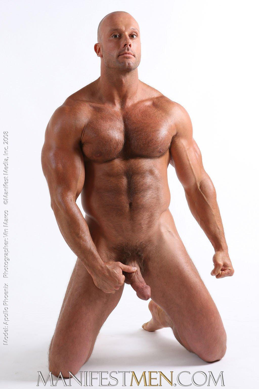 Tiger's E. reccomend Gay naked stud