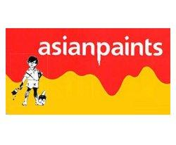 best of Paints + gattu Asian