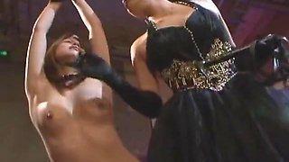 German shephard lick pussy