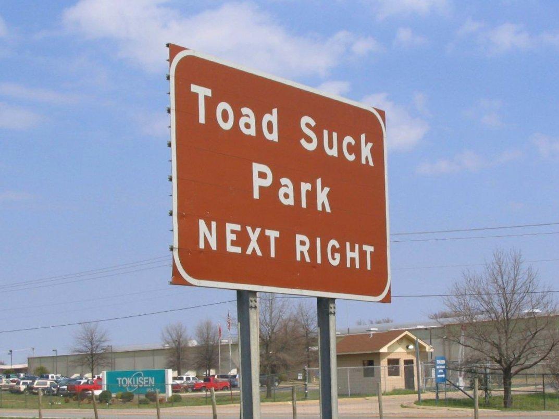 Park suck conway toad