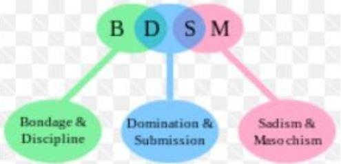 Definition mirroring bdsm