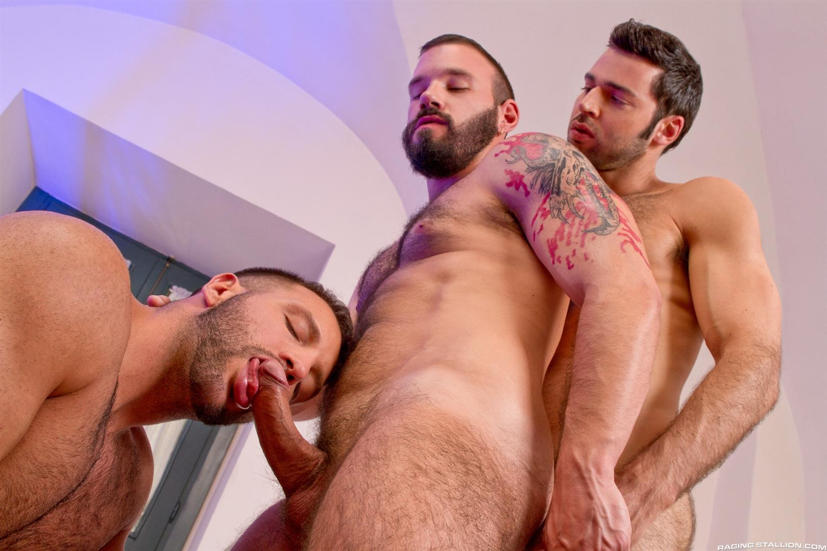 Gay sex porn hairy
